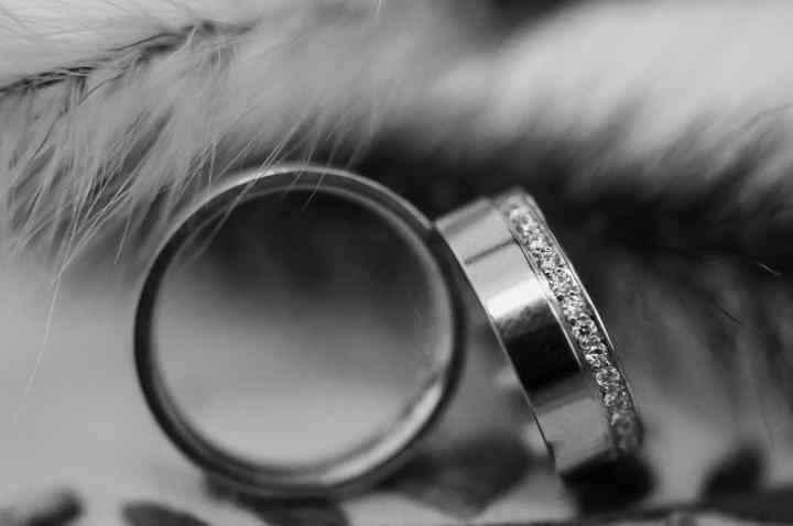 Aliança de casamento: escolha a sua - 1