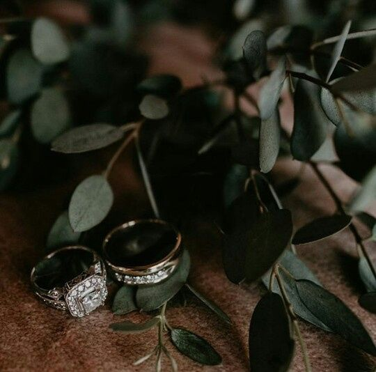 Indicações foto&filmagem #elopementwedding - 4
