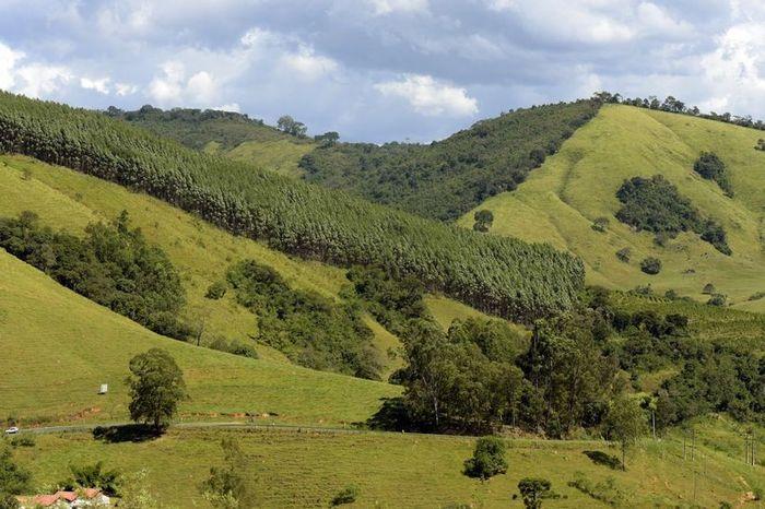 RESULTADO: Descubra o destino perfeito para a sua lua de mel no Brasil 2