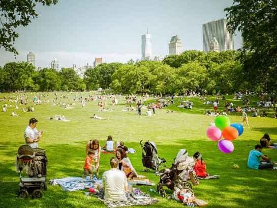 Picnic no Central park - NY