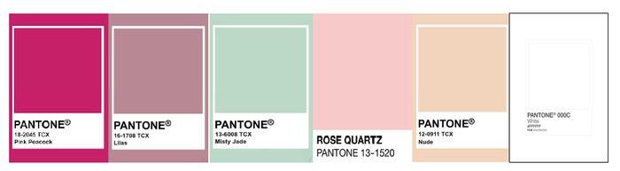 Passo a passo para escolha da paleta de cores 6