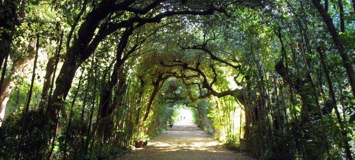 Jardim de Boboli - Florença (Firenze)