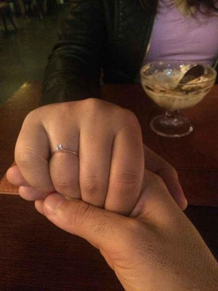 Meu pedido de casamento! - 1