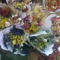 Feira das flores ceagesp - 2
