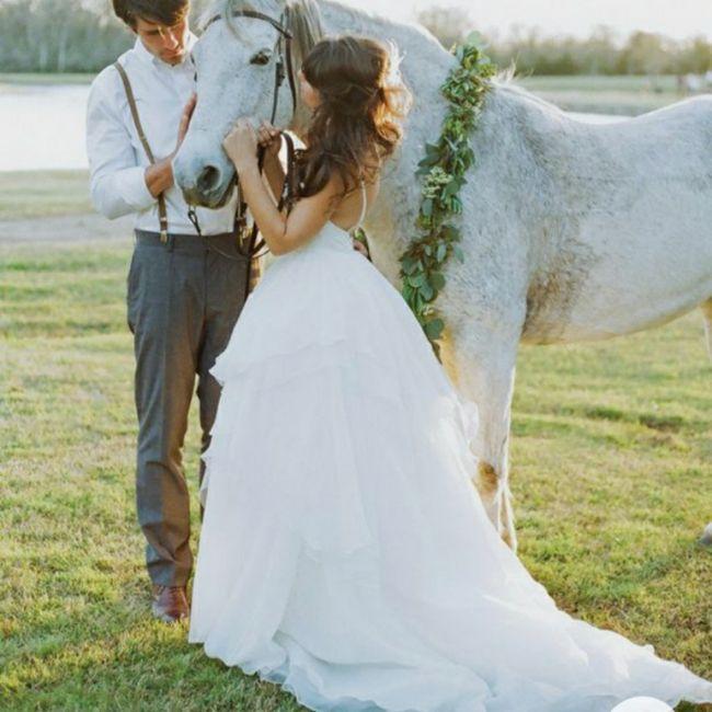 Inspirações de pets no casamento. Fofura infinita. 🐾🤍🐶🐱 3