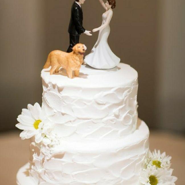 Inspirações de pets no casamento. Fofura infinita. 🐾🤍🐶🐱 13