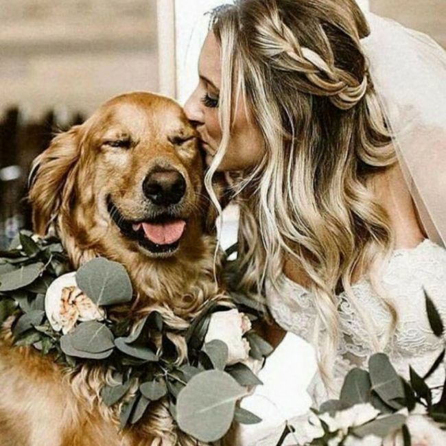 Inspirações de pets no casamento. Fofura infinita. 🐾🤍🐶🐱 18