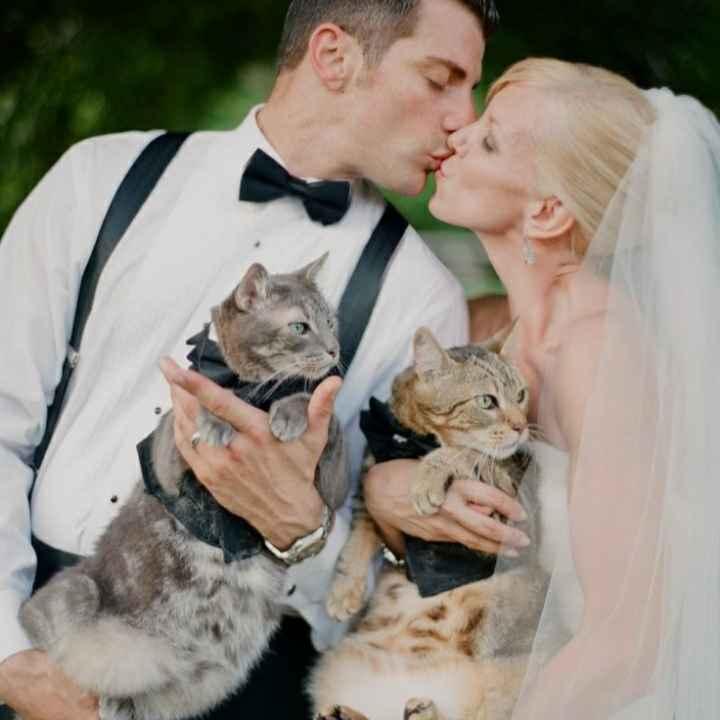 Inspirações de pets no casamento. Fofura infinita. 🐾🤍🐶🐱 - 2