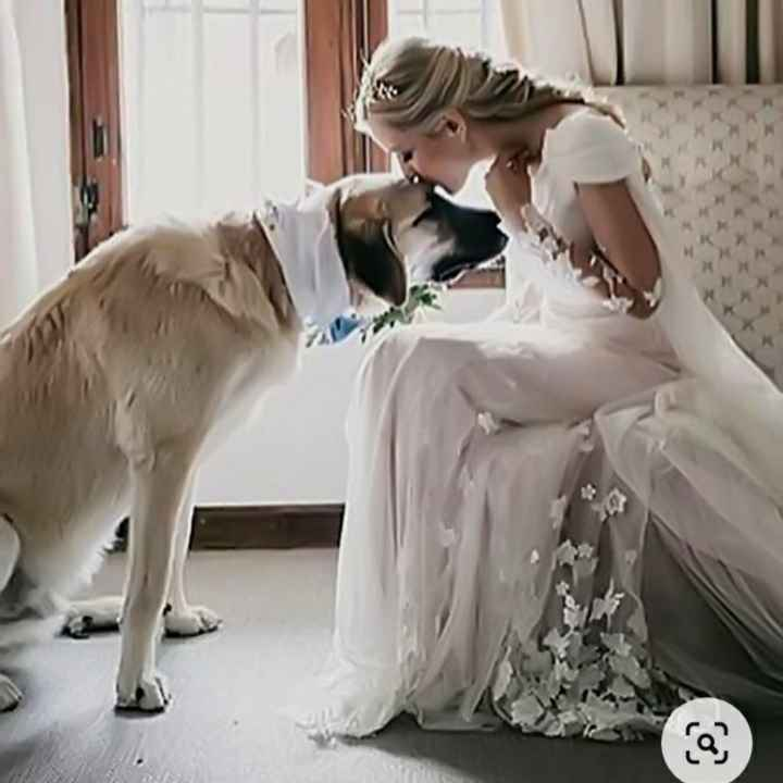 Inspirações de pets no casamento. Fofura infinita. 🐾🤍🐶🐱 - 12
