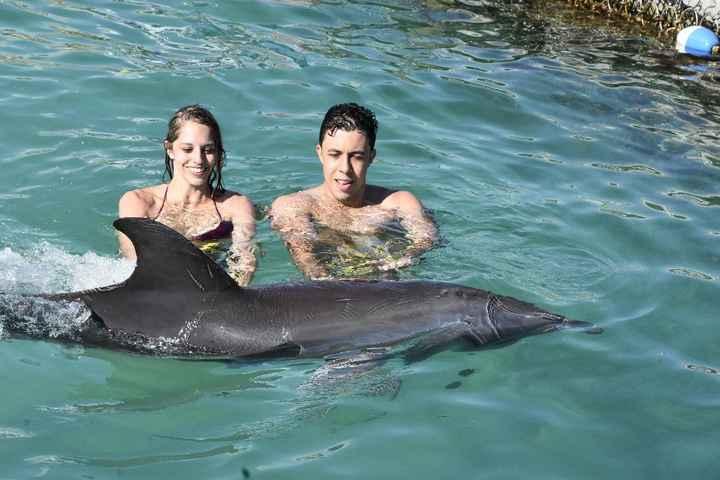Nadando com os golfineos =)