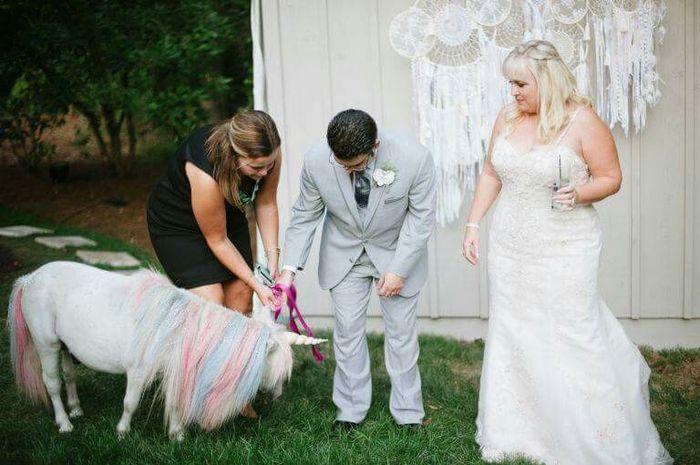 Casamento Com Um Convidado Especial Um Unicórnio Vemver