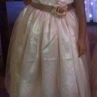 Saga do Vestido das Daminhas - 1
