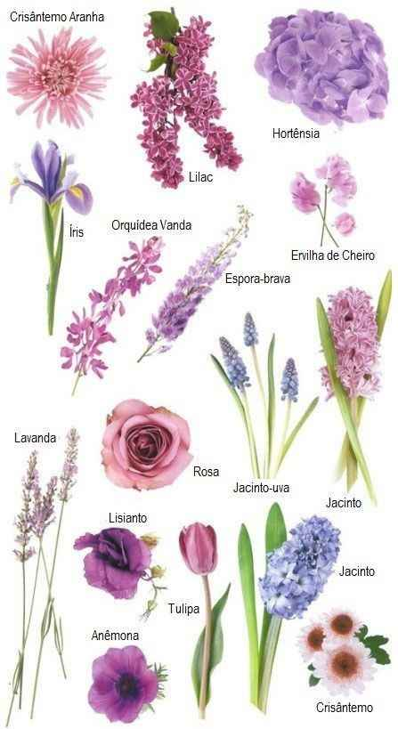 Flores para o dia c - 1