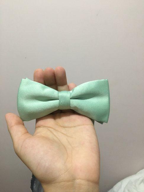 Perrengue da gravata borboleta #vemver 3