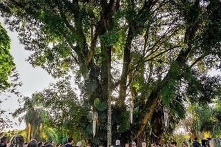 Santa Isabel Eventos