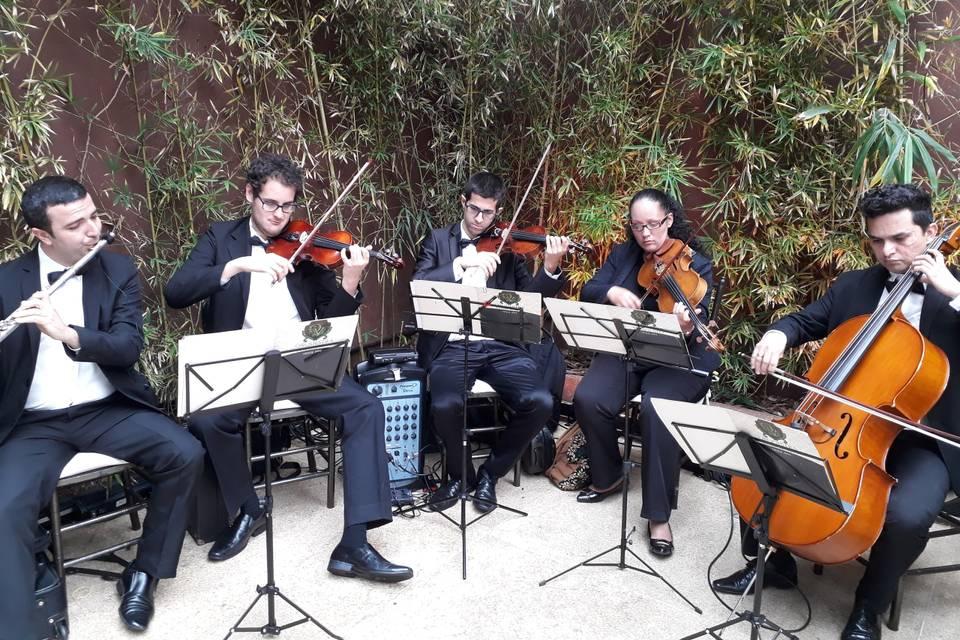 Quarteto de cordas + Flauta