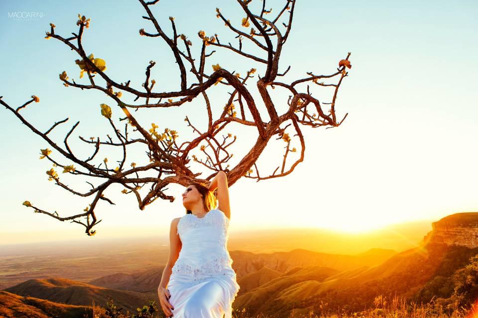 Maccarini Weddingphoto