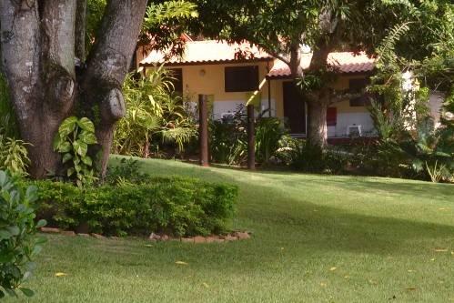 Area verde / Jardim tropical