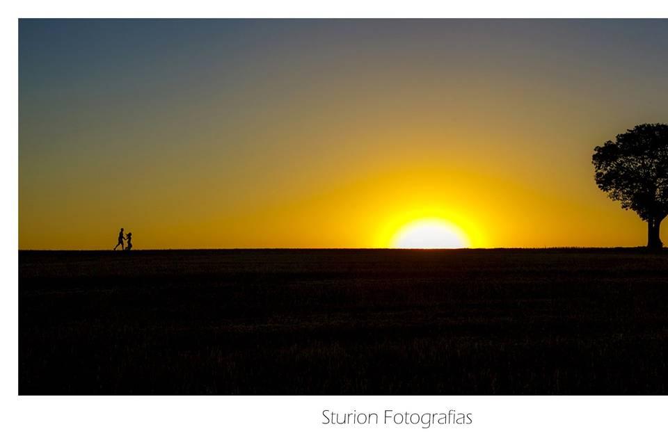 Sturion Fotografias